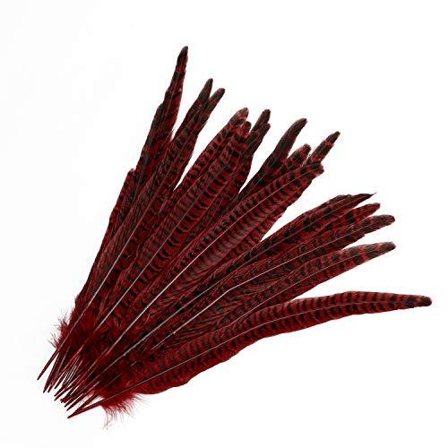 20 stück Fasan federn, Mwoot 25-30cm/ 10-12 Zoll Länge Fasan Schwanzfedern, Hutfeder (Rot)