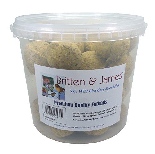 Britten & James 40 Sfere grasse di qualità Premium in Una Comoda Vasca da Viaggio richiudibile, Fresca e Senza residui