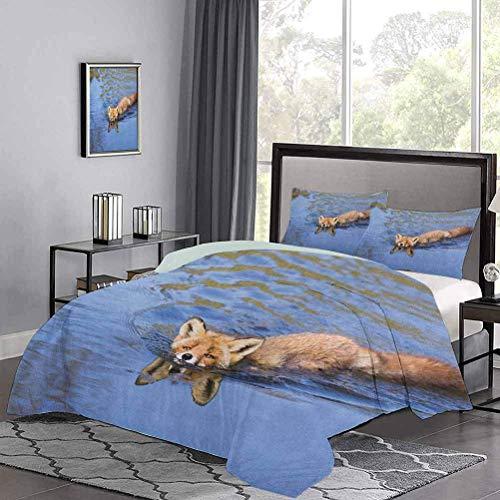 Funda nórdica de tres piezas de Cute Fox Swimming in River Natural Life Mammal Wild Animal Image Print Juego...