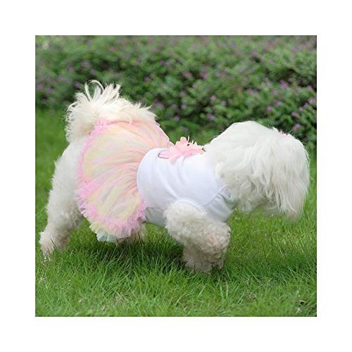 WEIJ Huisdier Prinses Jurk Kleurrijke Cake Hond Kant Rok Kat Puppy Zomer Kleding Bruiloft Party, L, Kleur: wit