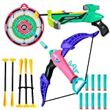 Bow and Arrow Set for Kids, Toy Crossbow Set, Archery Shooting Set, Bow & Arrow Toy, Basic Archery Set, Indoor Outdoor Hunting Game for Boys Girls--Include 6 Suction Cup Arrows and 10 Chunk Bullets