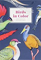 Birds in Color 50 Postcards (Gift for Bird Lover, Illustrated Bird Stationery)