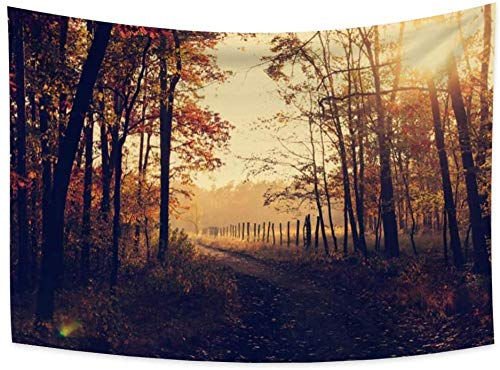 Yhjdcc Autumn Scenery Tapestry Forest Sunshine Sunset Scene Yellow Leaves Fallen Leaves Hills Road Path Wall Tapestry for Bedroom Room Decoration 150cm x 200 cm