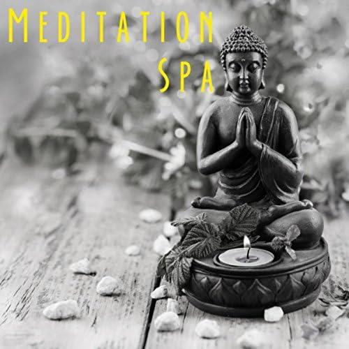 Yoga, Yoga Music & Yoga Tribe