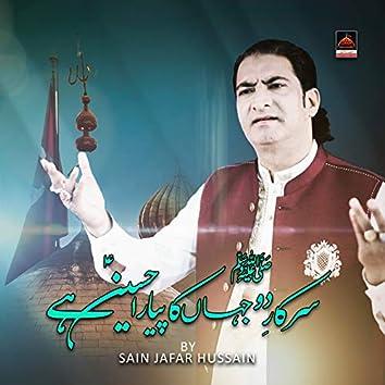 Sarkar Do Jaha Ka Payara Hussain Hai