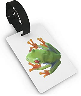 Mini Luggage Tag Frog Clip Art PVC Business Card Holder for Baggage Bag Name Address ID Label Travel Identifier Accessories