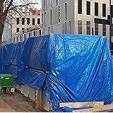 BricoLoco Toldo rafia plástico exterior. Lona protectora cubretodo impermeable. Cubrir, protección leña, muebles, dar sombra. Multiusos. Perímetro y esquinas reforzados. (6x10 mts., 1)