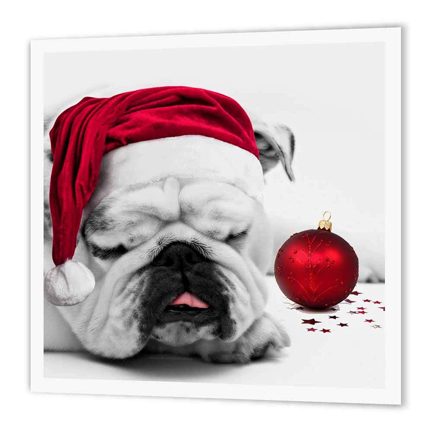 3dRose ht_62826_2 Sleeping Bulldog in Santa Hat Christmas Photo Courtesy of Esther Matheus-Iron on Heat Transfer Paper for White Material, 6 by 6-Inch