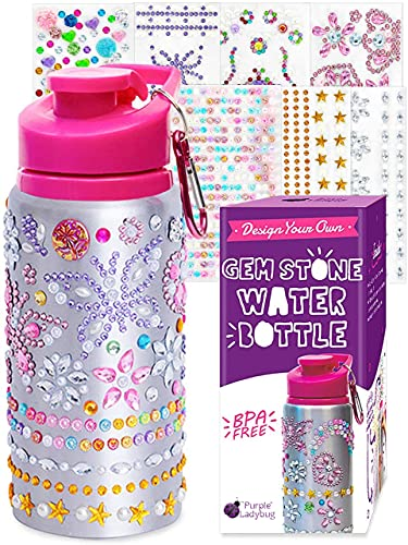 Purple Ladybug Decorate Your Own Water Bottle for Girls with Tons of...