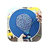 Herramientas de puntada   Kits de bordado 3D para principiantes, kit de bordado de punto de cruz con bordado, marco, globo de aire Swing Craft Home Decor-B-Plastic Hoop Kit