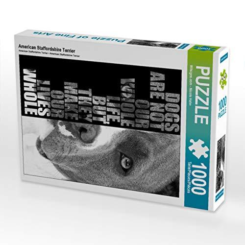 CALVENDO Puzzle American Staffordshire Terrier 1000 Teile Lege-Größe 48 x 64 cm Foto-Puzzle Bild von Nicole Hahn