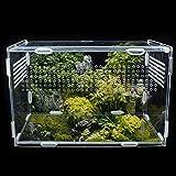 Magent Boîte d'alimentation D'insectes Terrarium Phasme Terrarium pour Reptile Amphibien Boîte Transparente D'élevage De Reptiles en Acrylique