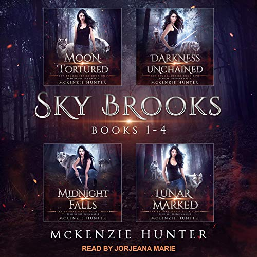 Sky Brooks: Books 1-4 Box Set cover art