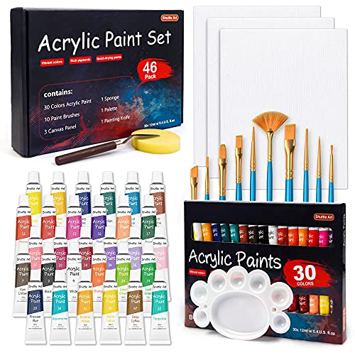 46 Pack Acrylic Paint Set, Shuttle Art 30 Colors Acrylic Paint with 10 Paint Brushes 3 Painting Canvas 1 Paint Knife Palette Sponge, Complete Gift Set for Kids, Adults Painting Canvas, Wood, Ceramic