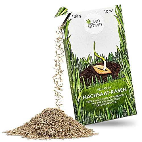 Rasen Nachsaat: Premium Rasensamen schnellkeimend für die Rasen Reparatur 100g à 10m² – Vitaler Sport und Spielrasen – Grassamen Nachsaat – Nachsaat Rasen Samen, Rasenreparatur lückenlos mit OwnGrown