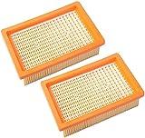 Filtro pieghevole compatibile con aspirapolvere Kärcher WD4 WD5 WD6 (2.863-005.0) e MV4 MV5 MV6 a umido e secco Poweka (2 pezzi)