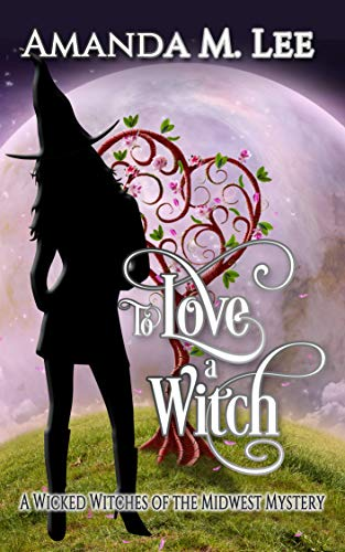 To Love a Witch (Wicked Witches of the Midwest Book 16) (English Edition)