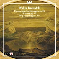 Phantastische Erscheinungen by WALTER BRAUNFELS (2005-11-15)