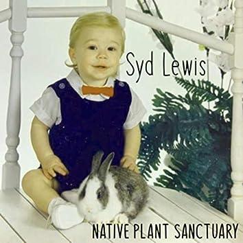 Native Plant Sanctuary