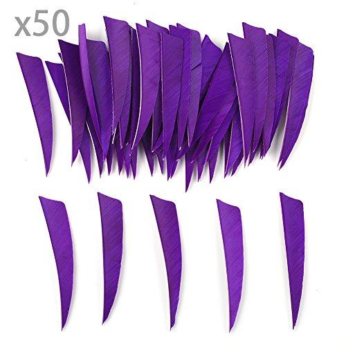 VERY100 50 Stück Naturfedern Federn Shield Cut 4