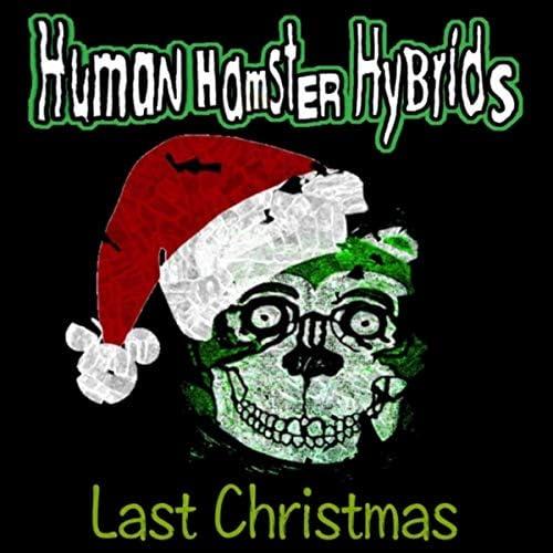Human Hamster Hybrids