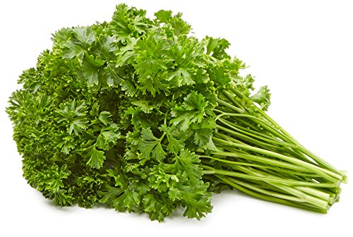 Parsley, One Bunch