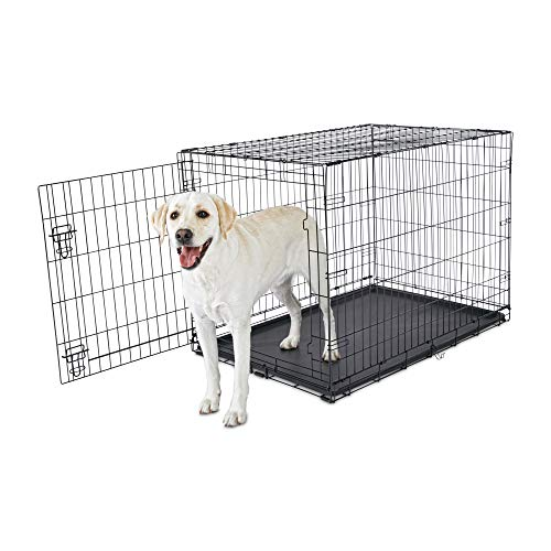 "Animaze 1-Door Folding Dog Crate, 42.5"" L x 28.5"" W x 30.5"" H, X-Large, Black Basic Crates"