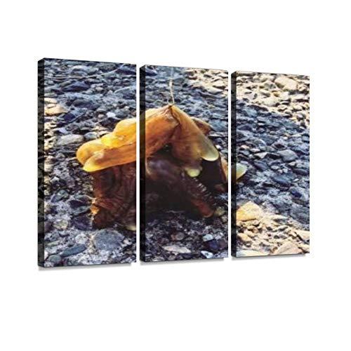 海の生き物 海洋生物 プニプニ 若洲海浜公園 釣り 生物 海底 新木場 埋め立て地 水 水分 海 海水 公園 影 不思議な 塊 茶色モダン アートボード 壁アート 壁掛け モダンアート 壁飾り木枠セット 壁芸術 新築祝い