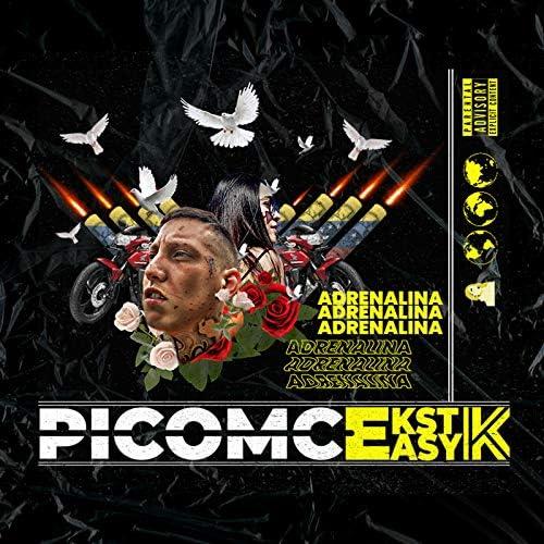 Picomc & Ekstasyk