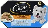 Cesar - Cibo Umido per Cani Senior 10+, in Gelatina, Facile da digerire, Delicato sullo Stomaco, 24 vaschette (6 x 4 x 150 g)