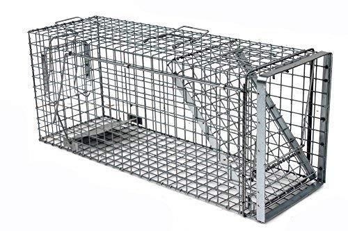 Holtaz Hardy 105x34x42 cm 1 Porta Gabbia Trappola in Metallo per Catturare Animali Vivi. con Extra Un Esca.