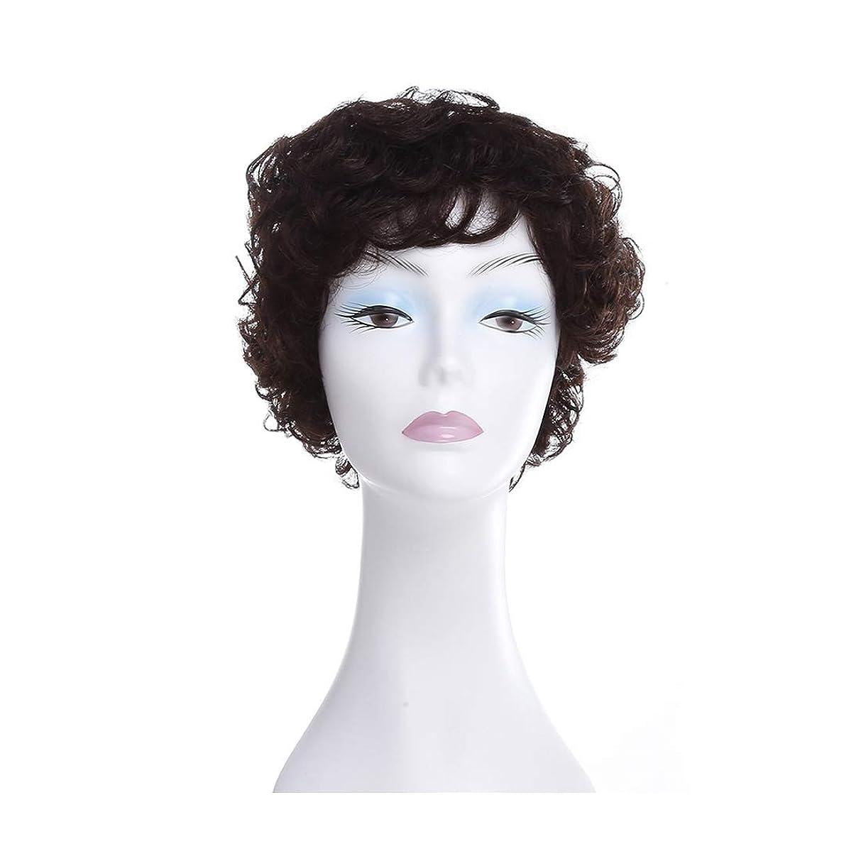 ディプロマ息切れ起こるJIANFU 中高年の老人の女性の髪型フル帽子ふわふわの短い髪のかつら (Color : Natural black)