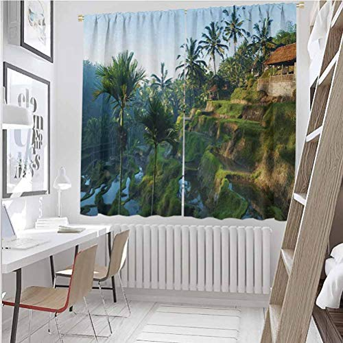 Toopeek Balinese Room darkened heat insulation curtain Terrace Rice Fields Palm Trees Traditional Farmhouse Morning Sunrise Bali Indonesia Living room curtains W42 x L63 Inch Green