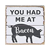 Sincere Surroundings PET10048 You Had Me at Bacon 8 x 8, Blue