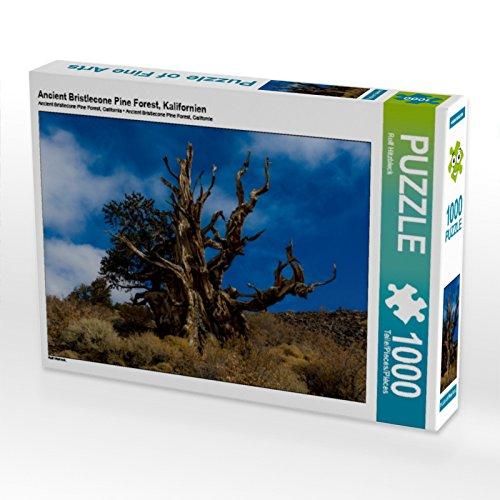 Preisvergleich Produktbild Ancient Bristlecone Pine Forest,  Kalifornien 1000 Teile Puzzle quer