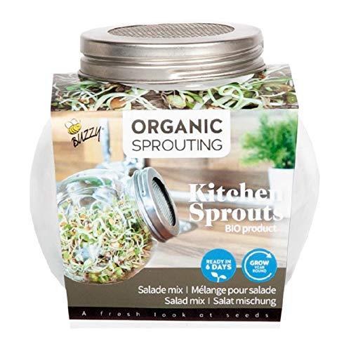 BIO Sprossen Anzuchtset - 1 Sprossenglas im Set mit Probepackung Spossensamen - 7,5g Salatmischung - Keimglas für Sprossen - Keimschalen für Sprossen - Sprouting