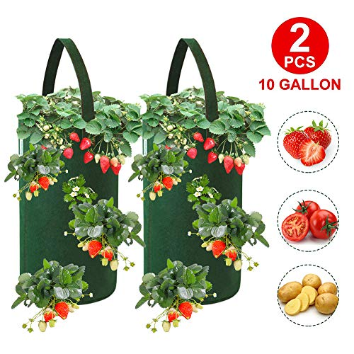 FALUCKYY Strawberry Planter Bags, 2 Pack 10 Gallon Hanging Strawberry Grow Bags, Breathable Non-woven Gardens Strawberry Planting Growing Bag Planting Pots for Garden Plants Herbs Flowers, 22 x 38cm