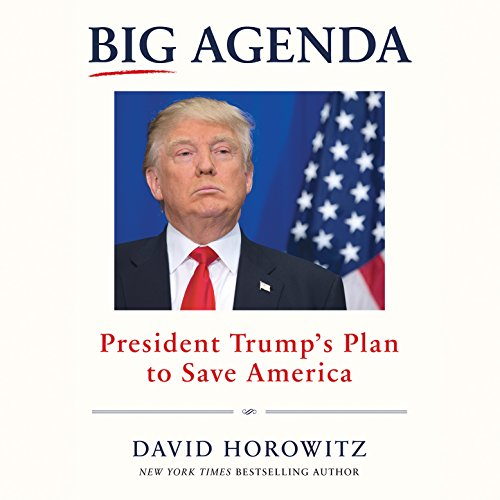 Big Agenda audiobook cover art