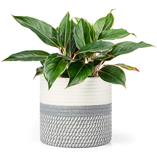 Dahey Small Cotton Rope Plant Basket Woven Storage Basket for Up to 7' Planter, 7.5' x 8' Decorative Flower Pot Cover Closet Storage Bin Table Desk Organizer Modern Home Decor, Grey and White