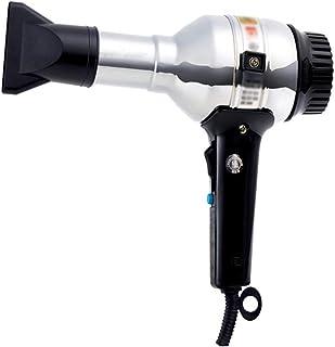 MIMIOOORE Potente secador de Viaje rápido Blow Metal Shell Secadora fría/Caliente Aire (Color : Silver)