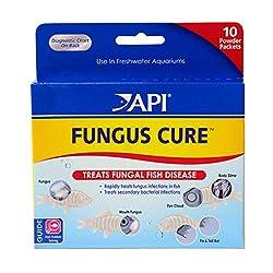treats fungal fish disease
