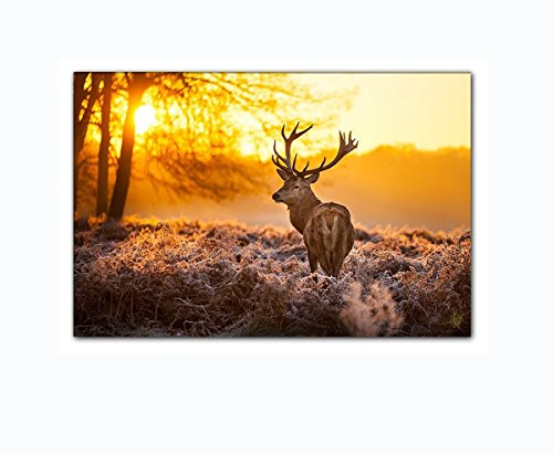 Leinwandbild Hirsch im Wald bei Sonnenuntergang Wandbild auf Keilrahmen. Beste Qualität aus Deutschland! Handgefertigt! 120x80cm
