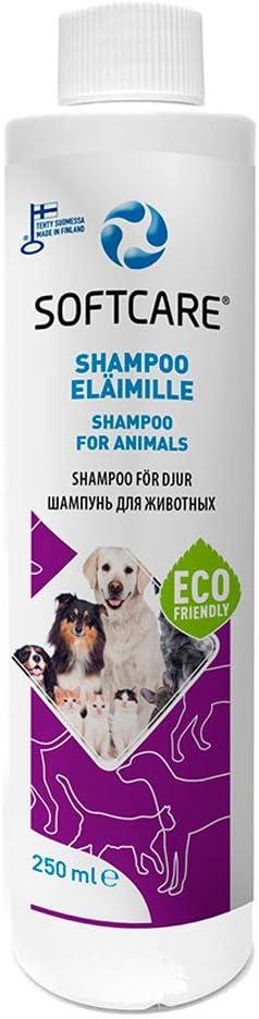 M-SOLUCIONES - Softcare Champú para Perros y Gatos. Sin Sulfatos Fragancias Colorantes.