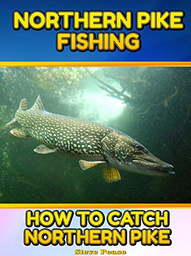 NORTHERN PIKE FISHING: How to catch More Northern P