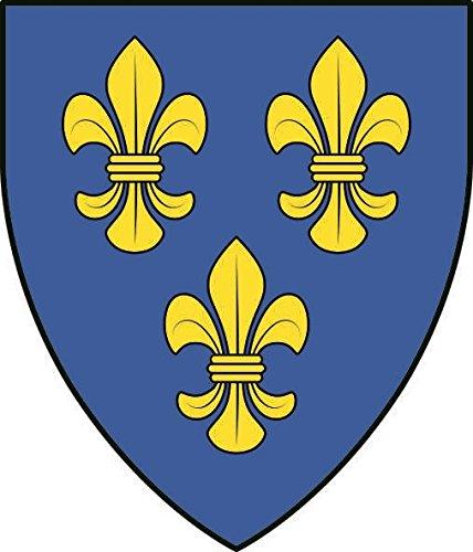 U24 Aufkleber Wiesbaden Wappen Autoaufkleber Sticker Konturschnitt