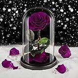 Eterfield Ewige Rose Handgemachte Immerwährende Echte Rosen Konservierte Blume im Glas Valentinstag Geburtstag Muttertag Thanksgiving Weihnacht Hochzeitstag Geschenke (Lila)