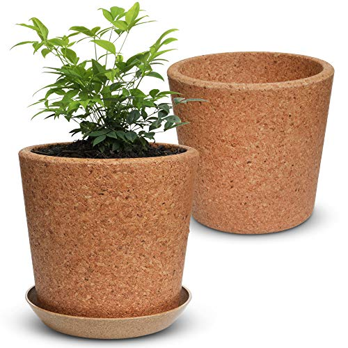 """Wild Pact 75"""" Cork Flower Pot with Drainage Coarse Grain: EcoFriendly Natural Pot for Plants  1x Cork Pot  Rice Hull Saucer Set – Succulents Herbs  Multi Use Indoor Planter  Gardening Gift"""