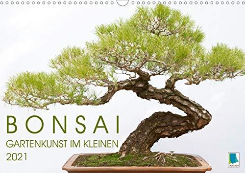 Bonsai: Gartenkunst im Kleinen (Wandkalender 2021 DIN A3 quer): Japanische und chinesische Gartenkunst Bonsai Bäumchen (Monatskalender, 14 Seiten )
