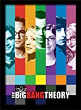 Pyramid International The Big Bang Theory (Signals) 30x40
