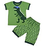 Pijama de dinosaurio o coche para niños, juegos de pijama para bebé, pijamas, camisetas y pantalones cortos Verde verde 1-2 Años